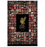 Poster Liverpool FC 109629