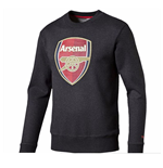 Sweatshirt Arsenal 2015-2016 (Dunkelgrau)