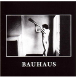 Vinyl Bauhaus - In The Flat Field