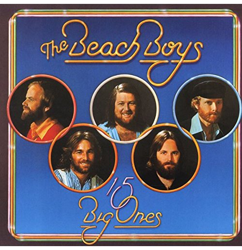 Vinyl Beach Boys (The) - 15 Big Ones