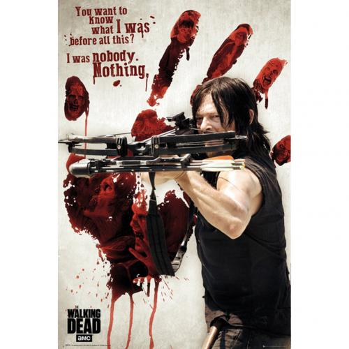Poster The Walking Dead Daryl 253