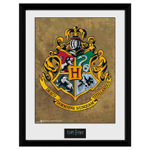 Bilderrahmen Harry Potter  244522
