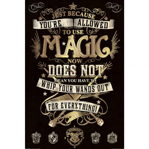Poster Harry Potter Magic 282