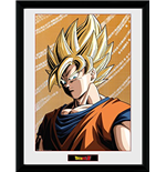 Bilderrahmen Dragon ball 252602