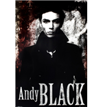 Poster Andy Black 253152