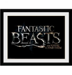 Kunstdruck Fantastic beasts 253300