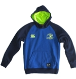 Sweatshirt Leinster 254892