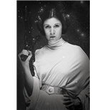 Poster Star Wars 262951