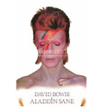 Poster David Bowie  271651