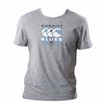 T-Shirt Cardiff Blues 2017-2018 (Grau)