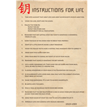 Poster Dalai Lama - Instructions For Life Maxi Poster