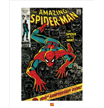 Poster Spiderman 283044