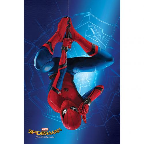Poster Spiderman 284220