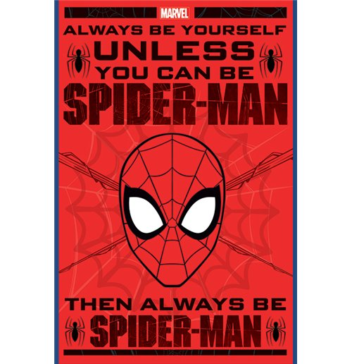 Poster Spiderman 285140