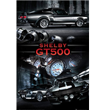 Poster Shelby 286405