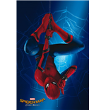 Poster Spiderman 288159