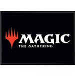 Magic The Gathering  Magnet