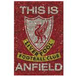 Poster Liverpool FC 39
