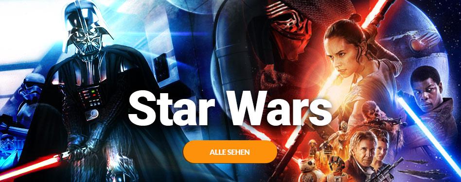 Star Wars Fanartikel 13